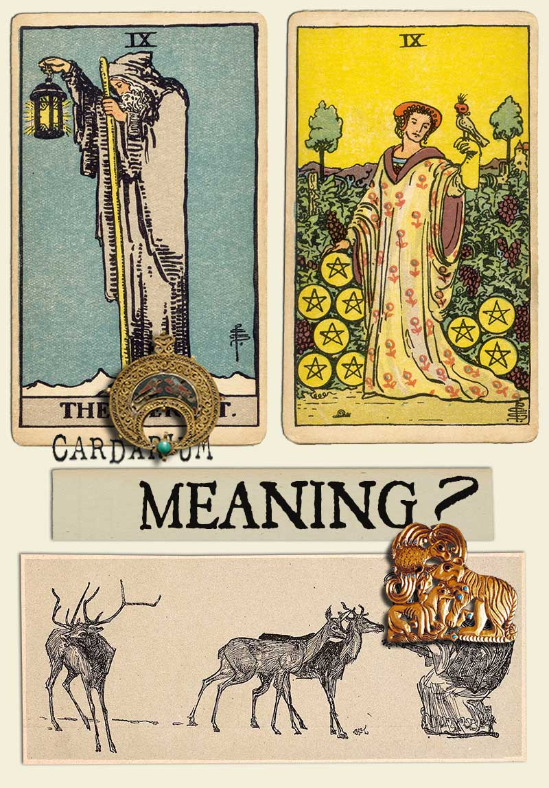 The Hermit and Nine Of Pentacles