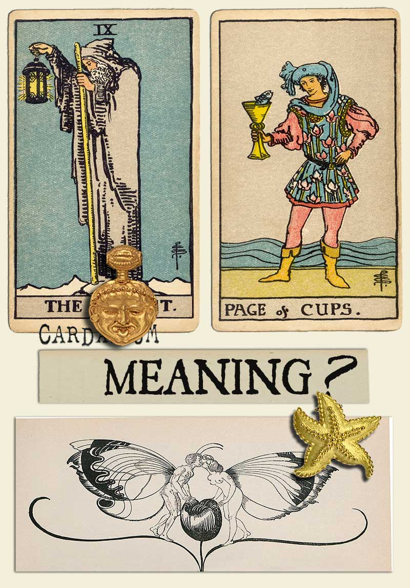 The Hermit and Page Of Cups