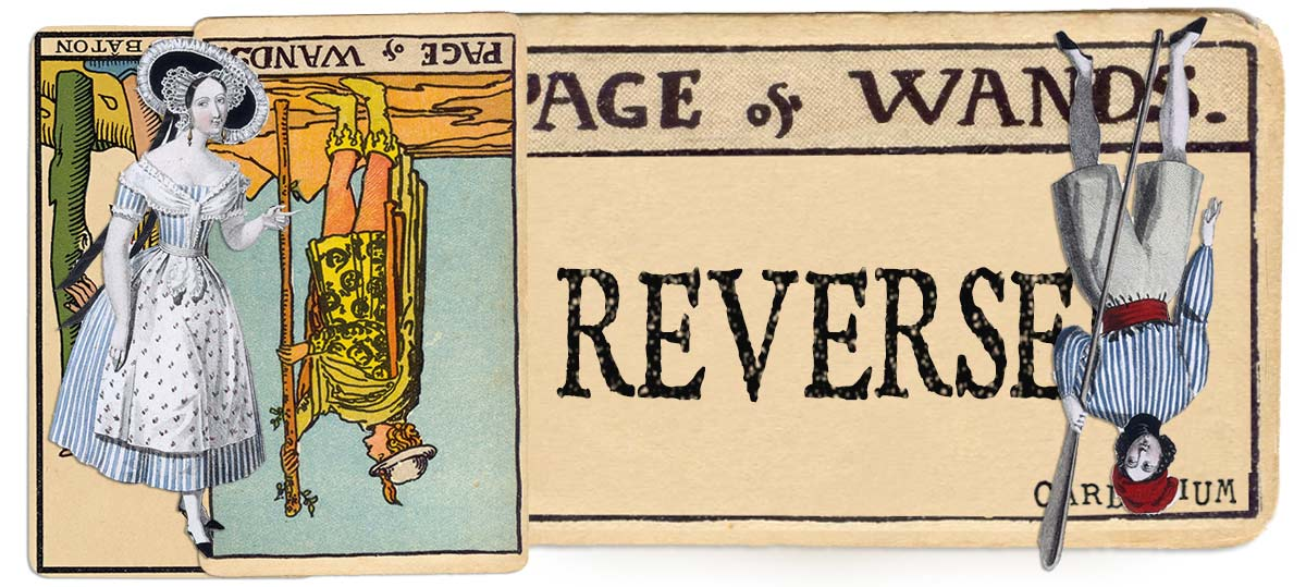 Page of wands reversed main meaning